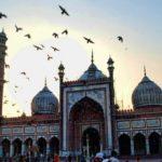 مسجد جامع دهلی جاذبه ای بسیار دیدنی در هند+تصاویر