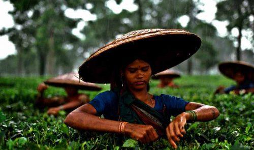 جاذبه های دیدنی بنگلادش