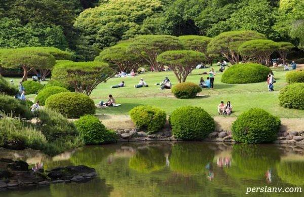 جاذبه های دیدنی توکیو