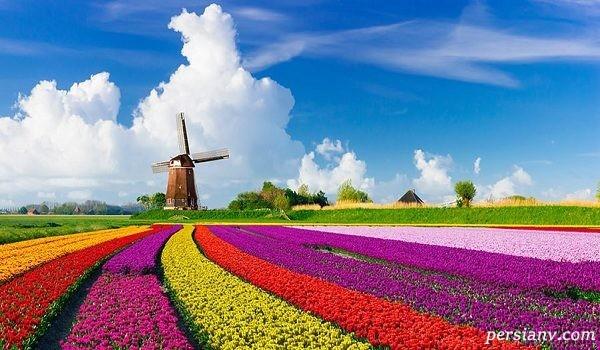 جاذبه های گردشگری پرطرفدار آمستردام پایتخت لاله های نارنجی+تصاویر