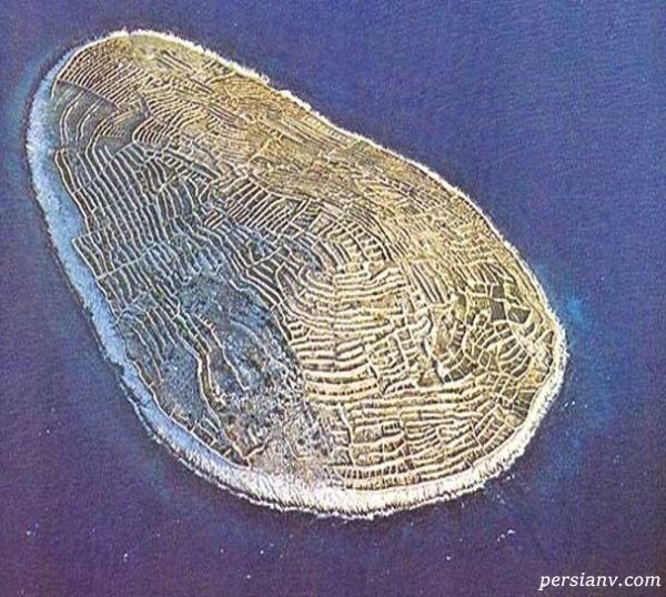 جزیره دریای آدریاتیک