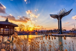 راهنمای سفر به کره جنوبی ، سئول و شناخت بیشتر ان + تصاویر