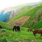 سوباتان بهشت ناشناخته ایران