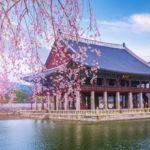 نکات سفر به کره جنوبی که باید بدانیم