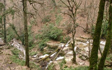 طبیعت فوق العاده بکر و سرسبزدر آبشار زیبا و دیدنی جوزک+تصاویر