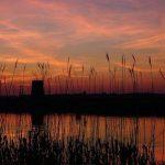 زیباییهای لبِ رودخانه های رمانتیک اروپا +تصاویر