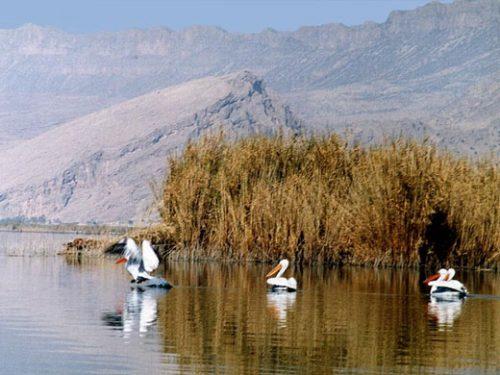 زیباترین و دیدنی ترین دریاچه های ایران+تصاویر