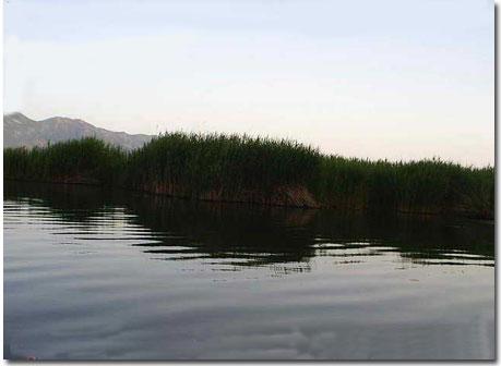 دریاچه زریوار مریوان +تصاویر