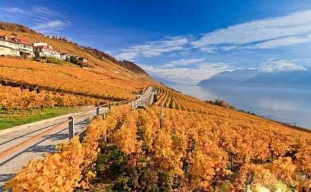 لاواکس نام منطقه ای زیبا در کشور سوئیس +تصاویر