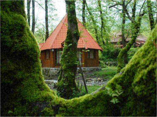 پارک جنگلی چالدره را بیشتر بشناسید+تصاویر