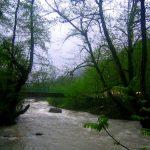 پارک جنگلی چالدره، بهترین مقاصد طبیعتگردی برای علاقهمندان به سفر +تصاویر