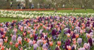 باغ اروپا ,بزرگترین باغ جهان +تصاویر