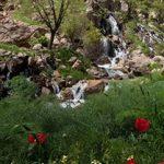 آبشار نره گر طبیعتی بکر برای عاشقان طبیعت گردی+تصاویر