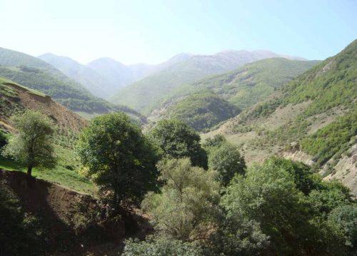 سفر به کرینگان , روستایی در دل جنگلهای بکر و و دست نخورده ارسباران+تصاویر