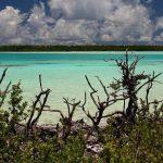 تالاب دیدنی مرجانی مشبک ماتایوا+تصاویر