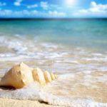 نکات بسیار کاربردی برای عکاسی در سفر ساحلی+تصاویر