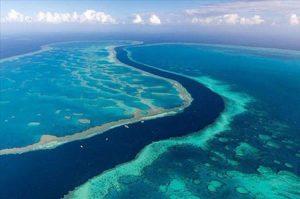 جزایر مرجانی استرالیا بزرگترین مجموعه صخرههای مرجانی در دنیا+تصاویر