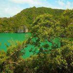 پارک طبیعی انگ تانگ تایلند+تصاویر