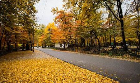 پارک جنگلی النگدره گرگان+تصاویر