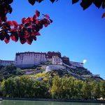 آسمان فیروزه ای چین، همان چیزی که گردشگران طبیعت به دنبالش هستند+تصاویر