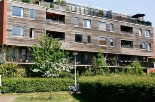 منطقه ای بدون خودرو در آمستردام +تصاویر