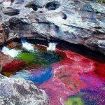 رودخانهی ۵ رنگ، زیباترین رودخانهی جهان +تصاویر
