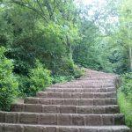گشت و گذار در طبیعتی بی نظیر شیطان کوه لاهیجان را از دست ندهید+تصاویر