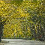 پارک ملی گلستان تیکه ای از بهشت ایران + تصاویر