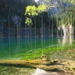 دریاچه کیندی عجیب ترین دریاچه ی جهان در قزاقستان