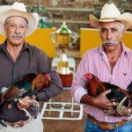راهنمای کامل و نکات کاربردی برای سفر ارزان به مکزیک