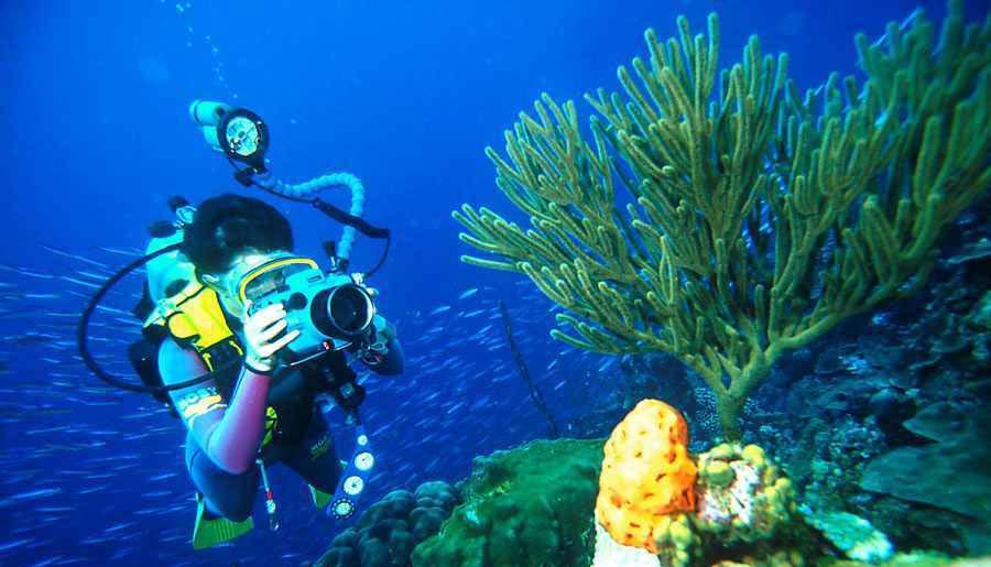 جاذبه های گردشگری در جزایر قناری