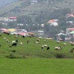 گشت و گذار در جاذبه ها و زیبایی های روستای سهولان+تصاویر