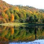 جاذبه های دیدنی و مکان های مناسب برای سفر پاییزی