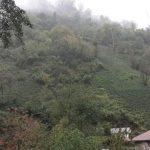 سفر به روستای فوشه بهشت کوچک و دیدنی در گیلان