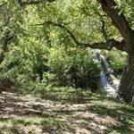 چشمه بالقلو ساوه جاذبه ای پرطرفدار بین گردشگران