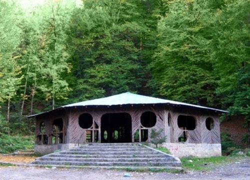جنگل راش ساری