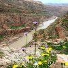 دره خزینه لرستان بلندترین و زیباترین پل معلق ایران