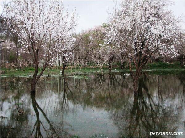 باغستان سنتی قزوین