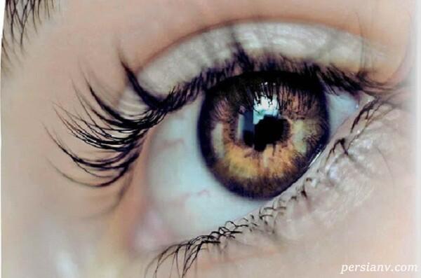 چشم، پیچیده ترین عضو بدن پس از مغز است