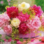 چگونه از گلهای بهاری نگهداری کنیم؟