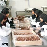 انواع مشاغل خانگی پر درآمد در ایران