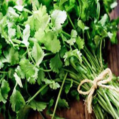 چگونه سبزیجات را در خانه پرورش دهیم؟