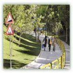 پیادهروی، خطر سکته مغزی در زنان را کاهش می دهد