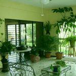 جلوگیری از انتقال آفات و حشرات همراه گلدان به داخل منزل