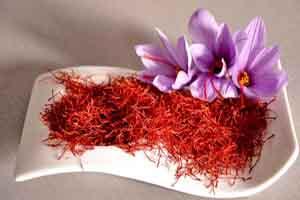 زعفران گیاه قرمزی که به آسانى در دست پر پر مى شود!