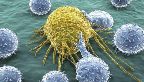 ایمنی درمانی سرطان