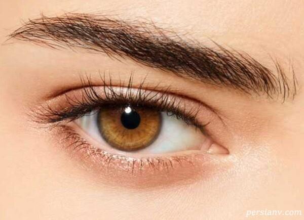 چشم پیچیده ترین عضو بدن بعد مغز