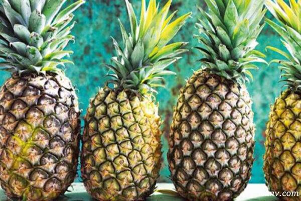 هضم غذا با آناناس