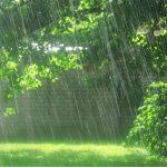 بارش پراکنده باران در 6 استان| بروز گرد و غبار در جنوب غرب کشور