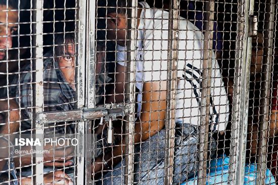 دستگیری سارقان در پایتخت